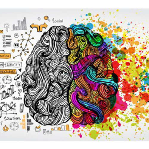 Neuroscience Literacy