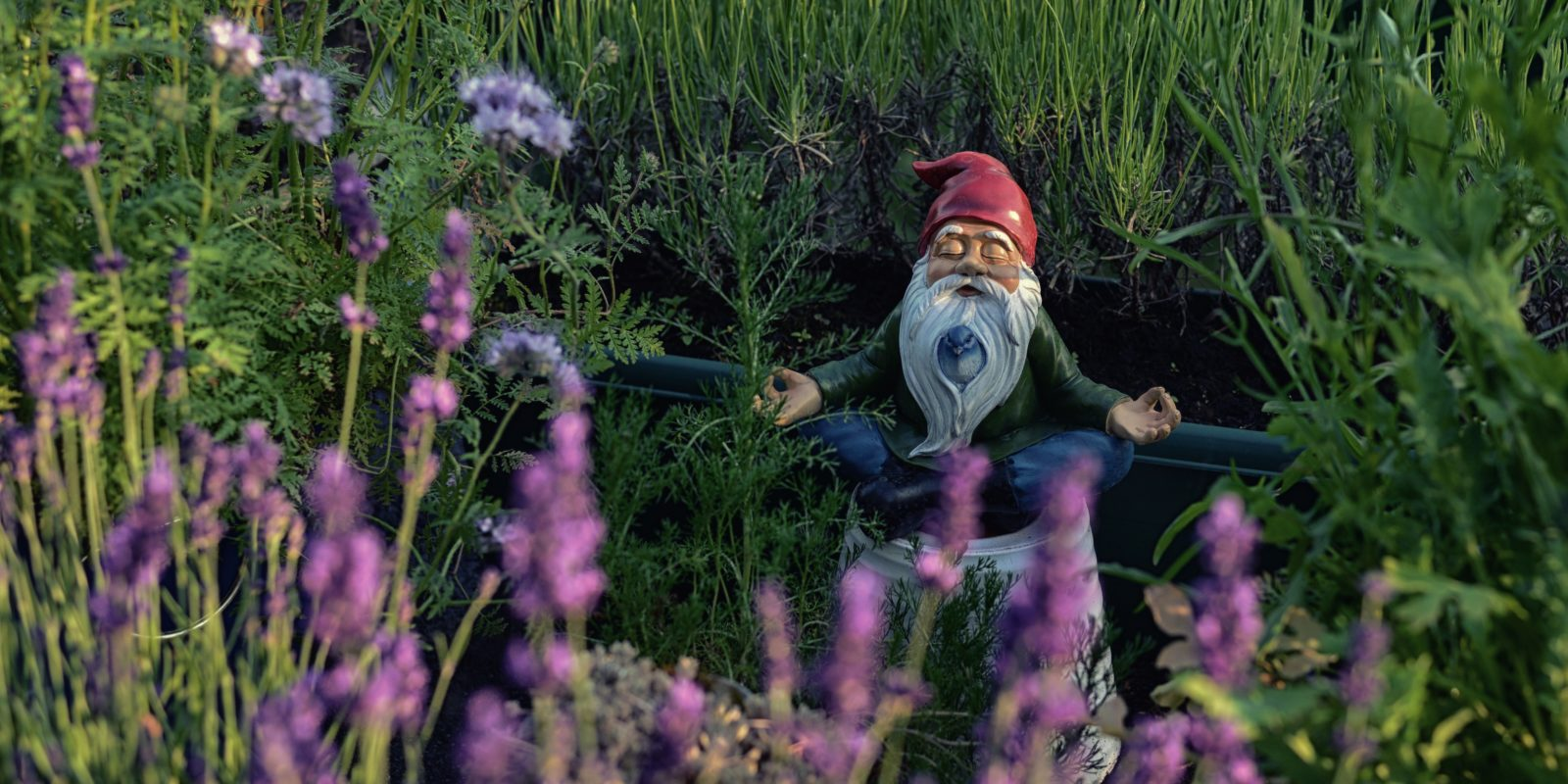 Gnome in water garden meditating